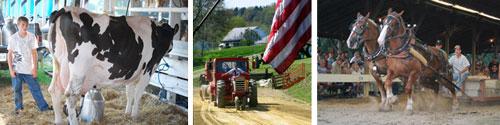 Milking, Tractor Pulls, Horse Pulls
